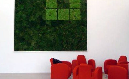 Decorative moss walls.