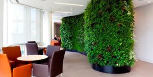 Office plant walls