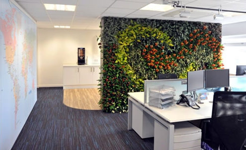 Workstation plant walls.